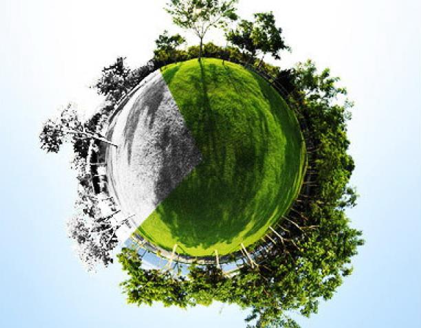 environment_medio_ambiente_inspiracion_montessori_approach_maria_montessori