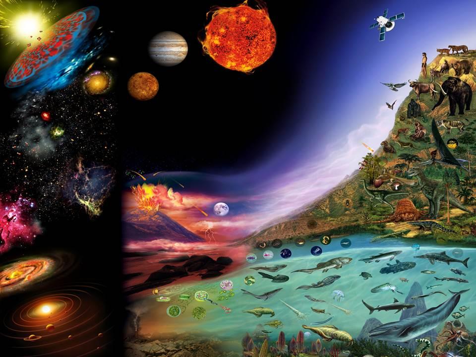 life_evolution_evolucion_vida_inspiracion_montessori_metodo_maria_montessori